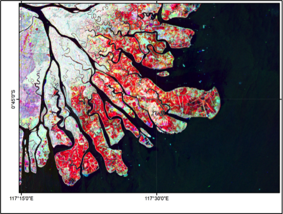 A composite of satellite images of East Kalimantan taken in 1996, 2007, and 2010 The red areas have largely changed from mangrove forest in 1996 to aquaculture by 2007. <br/> Photo: GMW