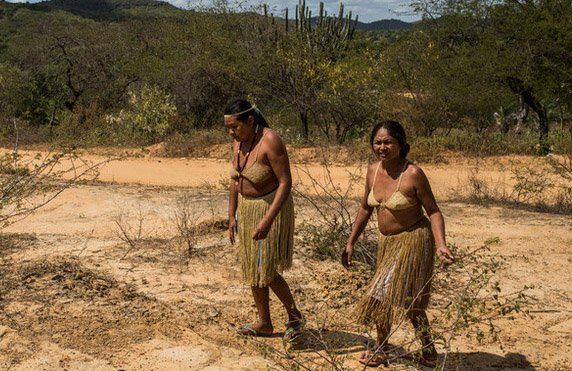 Kiriri women walk through their ancestral land, Bahia, Brazil (2016). In 1995, after years of fighting for their rights, the Kiriri indigenous people took back their ancestral land.