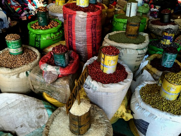 Smallholder farmers play an important role in growing pulses.