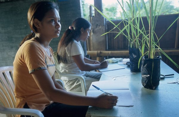 Two young women sitting at a table with rice plants in front of them.