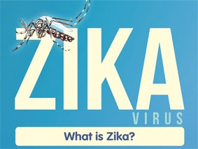 The rapid development of a safe and effective ZIKV vaccine is a global health priority.