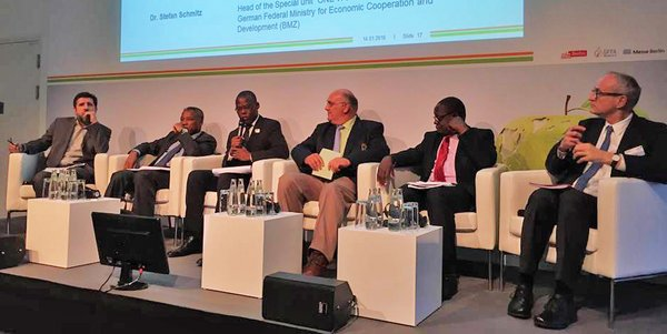 Experts and politicians from Europe and Africa discuss the issue of food security in Africa's rapidly growing cities.
