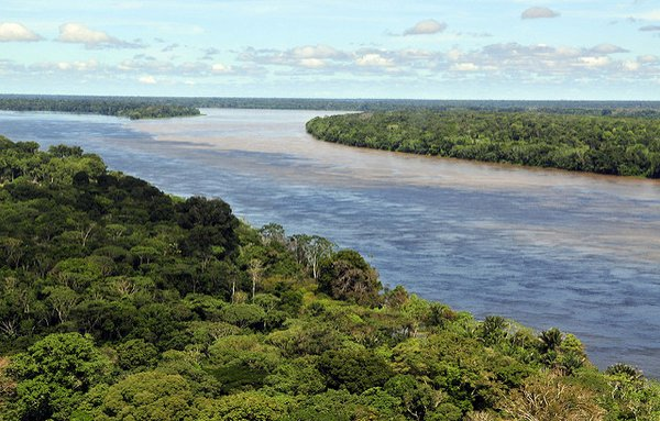 The Amazon Rainforest, Brazilian state of Amazonas. <br/> Photo: © Neil Palmer (CIAT)