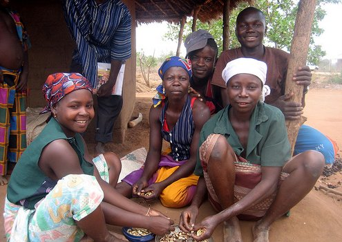 Through the Cashew Initiative the trained smallholders could raise their income by 120 USD per year. <br/>Photo: Erik Cleves Kristensen (flickr)