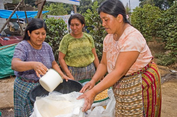 Many people in Central America will need food assistance.