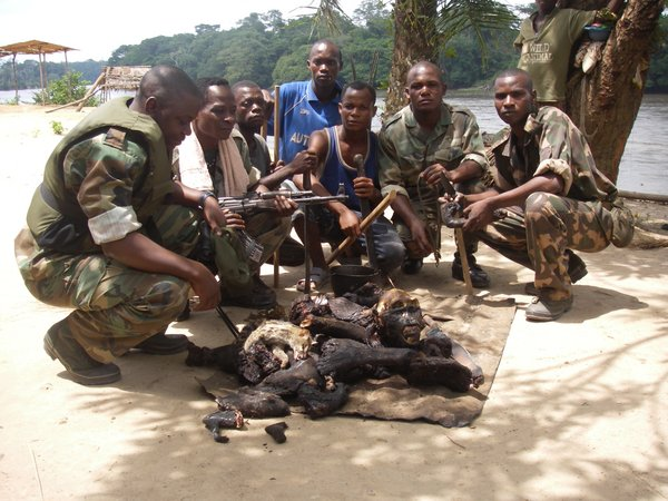 Impounded bushmeat, Dzanga Sangha, Central African Republic. <br/>Photo: ©WWF